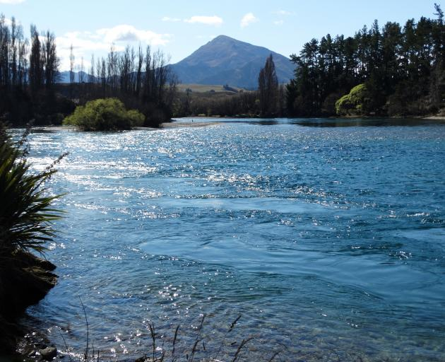 More scenes like this are likely if amendments to a Queenstown Lakes District Council bylaw are adopted at a hearing. Photo: Sean Nugent