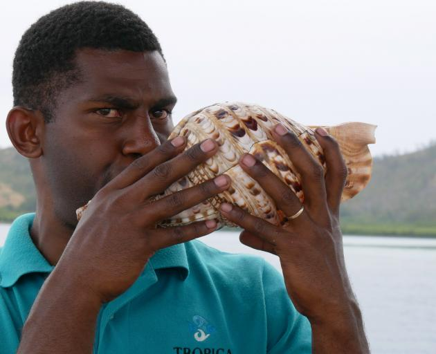 Tropica butler extraordinaire Apikui Delai demonstrates how to blow a conch shell.