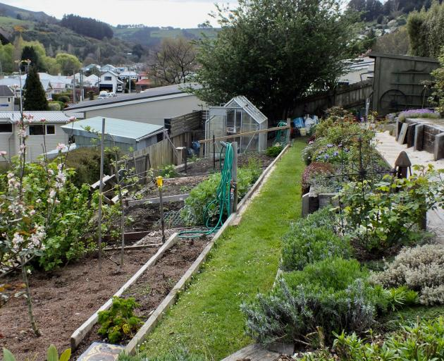 Starting with a steeply sloping lawn, Diana and Gary Dixon revamped their Northeast Valley garden...