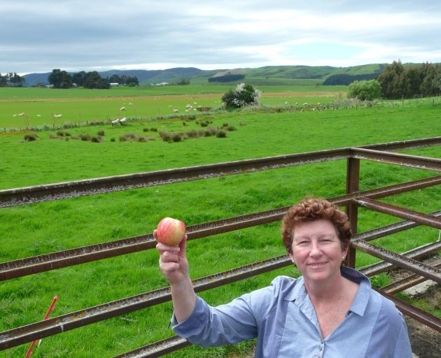 Owaka Going Forward chairwoman Aileen Clarke has plans to establish a heritage apple orchard on...