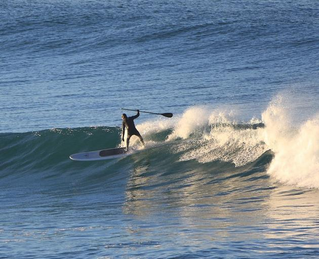 Doug Booth catches a wave while paddleboarding at St Clair beach. Photo: Mark Stevenson