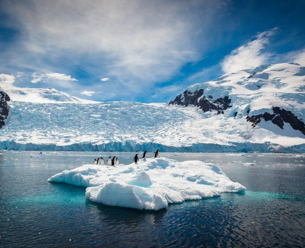 The largest of the proposed sanctuaries, the Antarctic Ocean Sanctuary, would have covered 1.8...