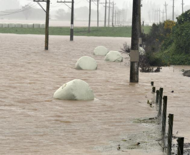 Silage bales float in a paddock on the Taieri during last week's flooding. Photo: Peter McIntosh