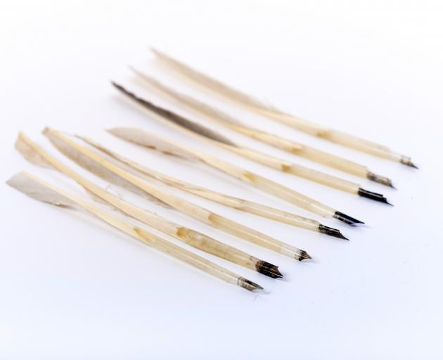 Quills. Late 19th to early 20th century. Gift of Helen Moran; Otago Museum Collection.