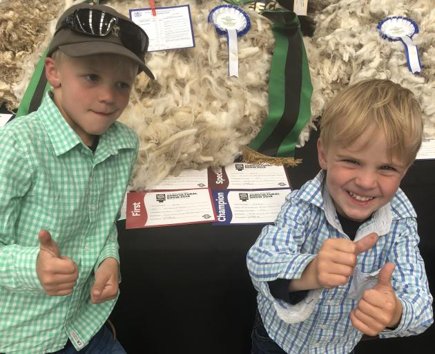 Delighted by their family's Armidale Merino Stud win  at the New Zealand Agricultural Show last week, are   (from left) Hugo Paterson (6) and Bede Paterson (4).  Armidale Merino Stud won the Supreme Champion Fleece title for its half-bred fleece. Photo: P