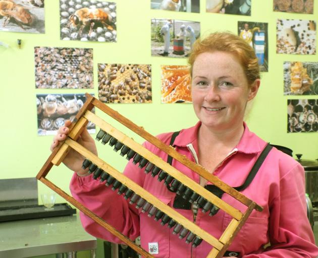 "Heidi Rixon with the unit in which she breeds ""nice golden brown"" queen bees."