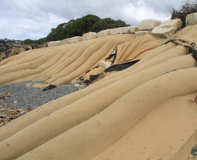 Sand sausages at Oamaru Harbour. Photo: Hamish MacLean