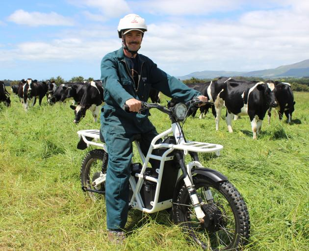 There's no need for Mark Anderson to fuel up before shifting cattle at Westridge Farm, because his motorbike is electric.Photo: Ella Stokes