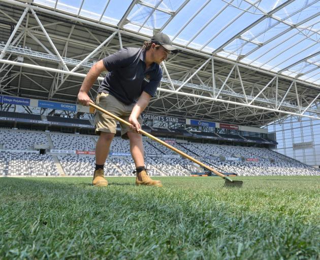 Forsyth Barr Stadium turf manager Michael Watson does some raking on Christmas Day. Photo: Gerard O'Brien