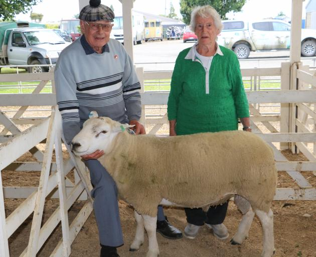 Peter and Marion Black, of Ermedale, sold this 18-month-old Texel ram for $8000 at the Gore A&P Association South Island Premier Ram Auction. Photo: Supplied