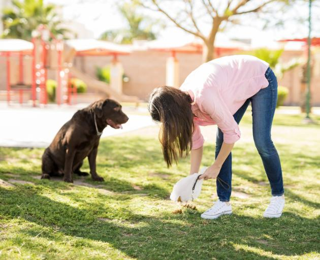 Because dog poo smells bad we avoid dealing with it. Photo: Getty Images