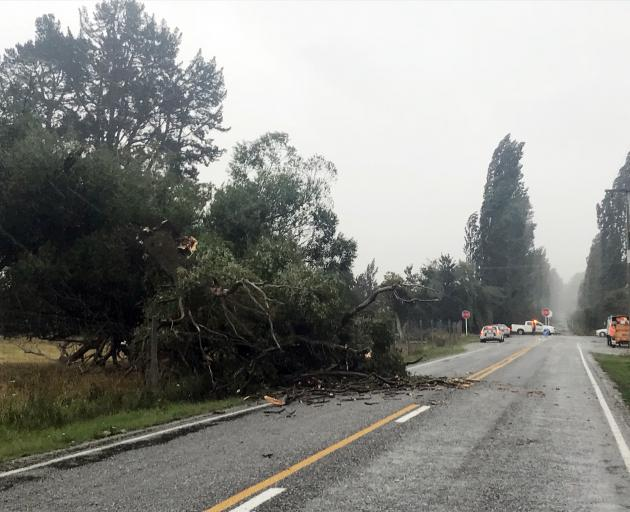 Hunter Rd, near Queenstown, is partly blocked by a fallen tree. Photo: Daisy Hudson