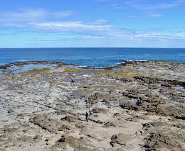 The fossilised landscape of Curio Bay.