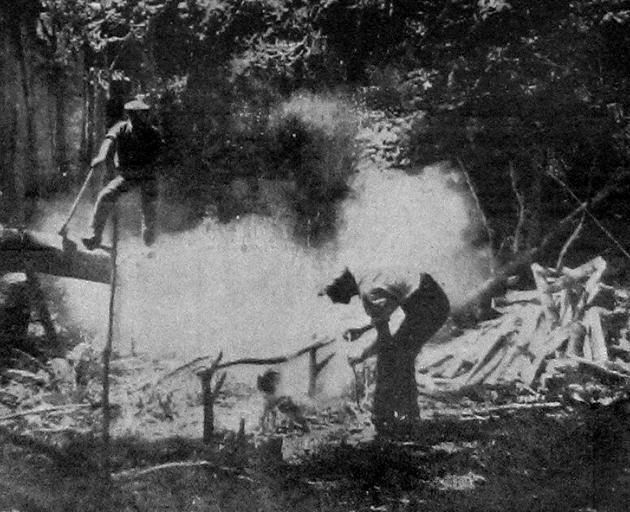 Boiling the billy: a bush scene near Riverton, Southland. - Otago Witness, 29.9.1919.