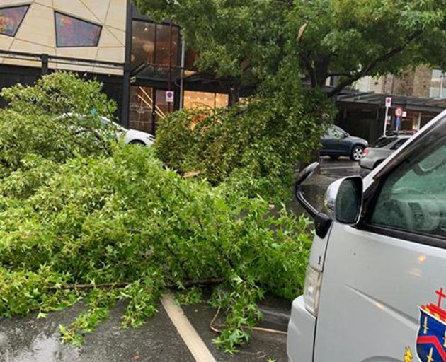 A tree blocks traffic at the corner of Church St and Marine Parade in central Queenstown. Photo: Tu Bull