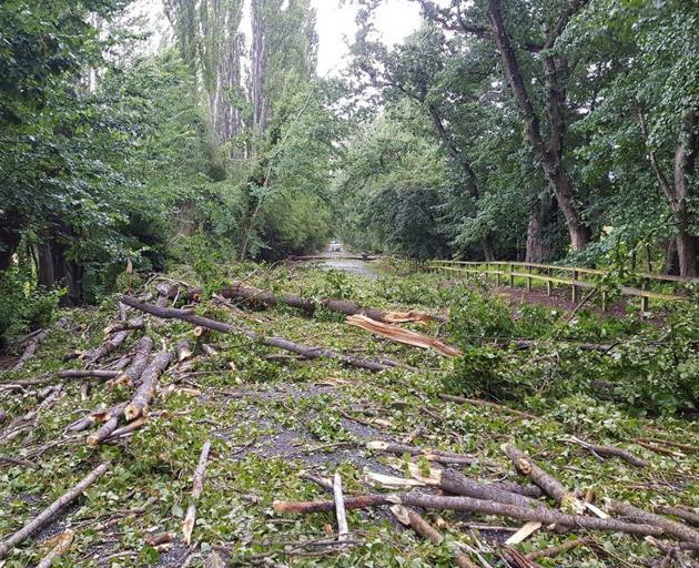 Trees and debris block Speargrass Flat Rd, near Queenstown. Photo: Matt Pitt