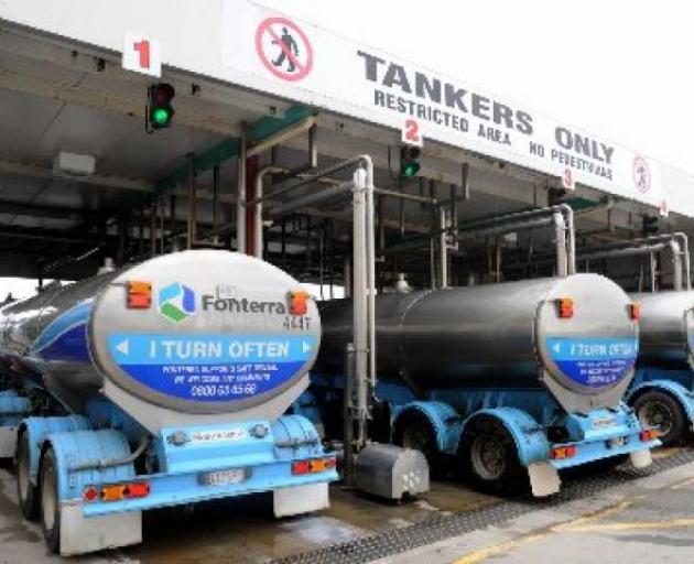 Fonterra milk trucks  Photo: ODT files