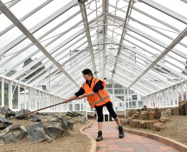 Kyla Mathewson works in the renovated winter garden glasshouse at the Dunedin Botanic Garden....