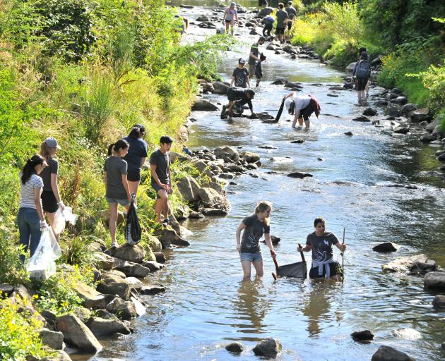 St Margaret's College residents clean up the Water of Leith near the University of Otago. Photo: Christine O'Connor