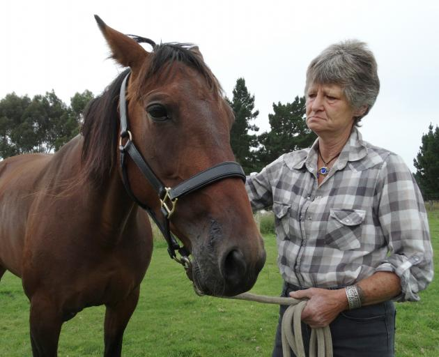 Kakanui woman Linda Chalmers comforts her horse, Candice, after it was injured when hit by a car...