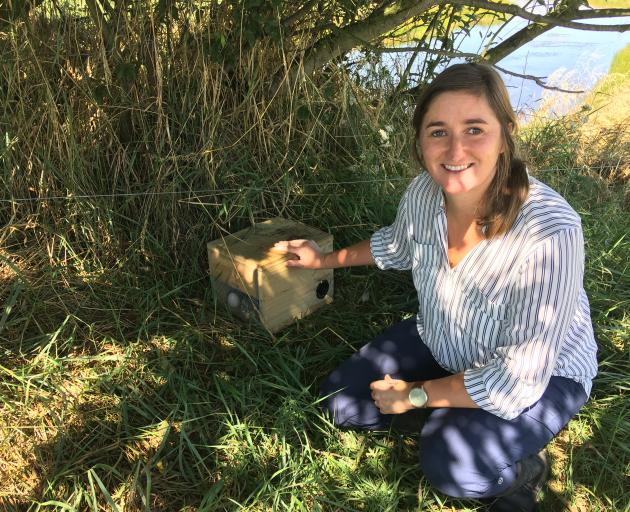 Rosemary Bird is waging war on predators, mainly ferrets and stoats, with 45 traps around the lagoon.