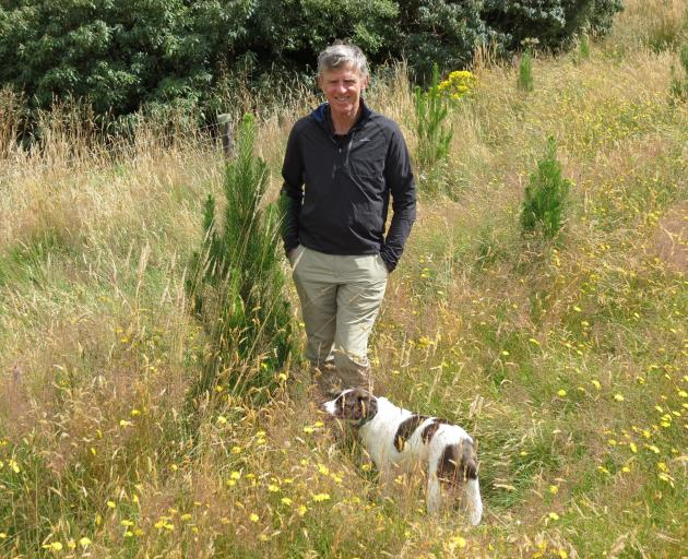 New Zealand Farm Forestry president Neil Cullen will be talking about upcoming and possible changes to the Emissions Trading Scheme at a South Otago Farm Forestry Association field day at Toko Mouth on February 22. Photo: Yvonne O'Hara