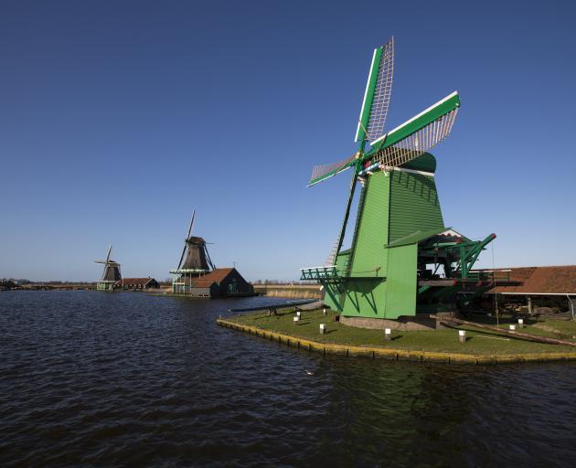 A green mill makes a striking display in Zaanse Schans. Photo: Cris Toala Olivares