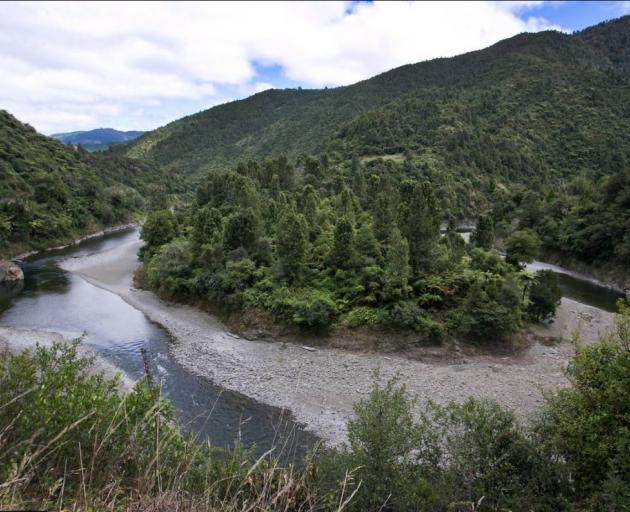 The Waioeka Gorge near where Peter went missing. Photo: NZ Herald