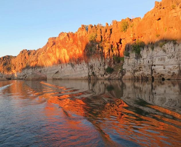 The Fitzroy River has carved a deep gorge into the remains of the ancient limestone barrier reef,...