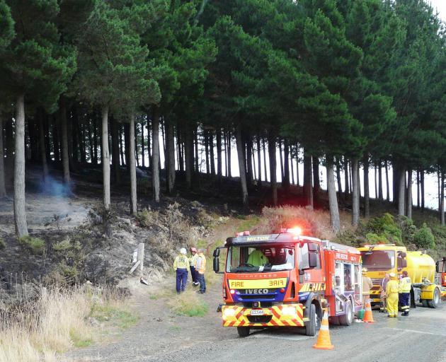 The long, dry summer affected Port Otago's log exports; pictured, firefighters discuss plans to extinguish a forestry fire near Milton, estimated to have covered 12ha, in late February. Photo: Richard Davison