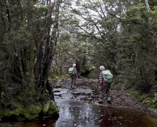 Twin brothers Nigel and Steffen MacKay take foraging tours.