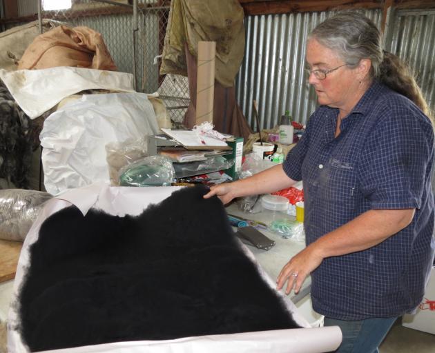 Barb Peel runs a fleece dyeing and carding business on the family farm near Raes Junction. Photo: Yvonne O'Hara