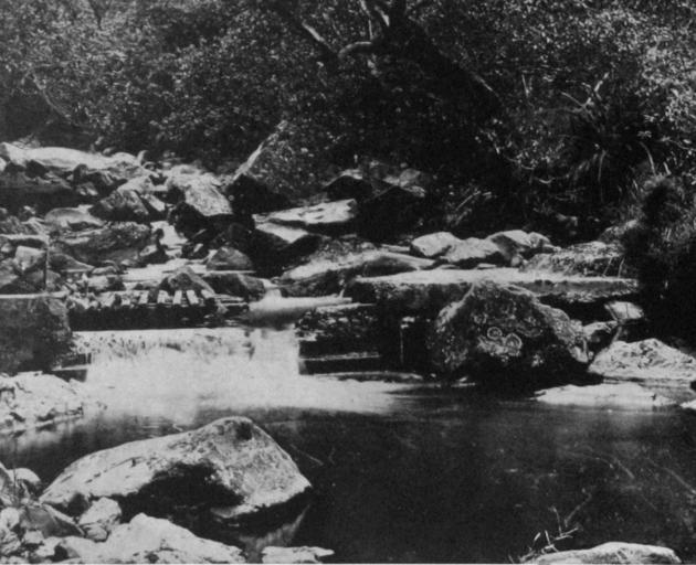 On the Upper Leith: the emergency intake near Morrison's Creek. - Otago Witness, 19.3.1919.