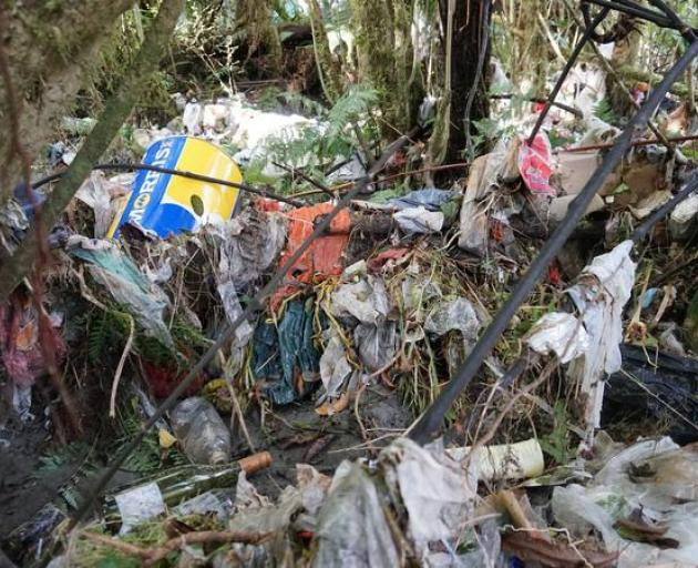 We need help': Massive rubbish cleanup too much for