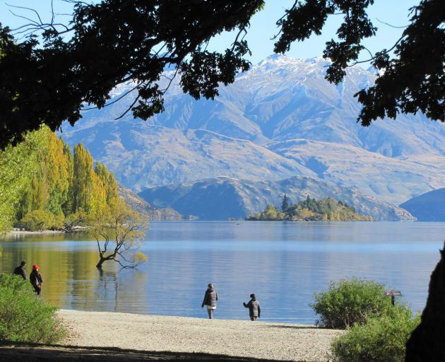 Cold temperatures did not seem to be putting tourists off visiting that Wanaka tree yesterday. It...