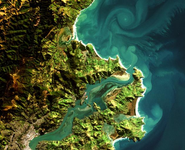 An image of the Dunedin coastline taken from the European Space Agency satellite Sentinel-2....