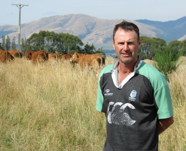 Clark Scott, of Loch Head Limousin Stud, near Heriot, pictured with some of their R2 Limousin heifers, said they had sent two yearling bulls to Dunsandel as part of Limousin New Zealand's annual trial. About 16 yearling bulls are run together under the sa