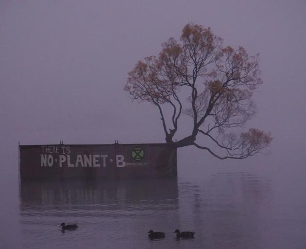 A different view awaited photographers keen to get a shot of the tree in Lake Wanaka this morning. Photo: Sean Nugent
