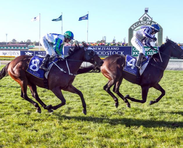 A jubilant Samantha Wynne guides Who Dares Wins home at Riccarton on Saturday.PHOTO: RACE IMAGES...