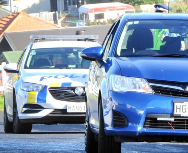 The silhouette of a dog that killed a cat in Dunedin yesterday can be seen in this car. Photo: Christine O'Connor
