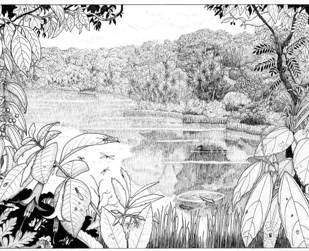 What Foulden Maar would have looked like 23million years ago. IMAGE: DR PAULA PEETERS