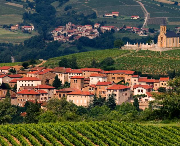 The rich countryside of the Beaujolais wine region. Photo: Getty Images