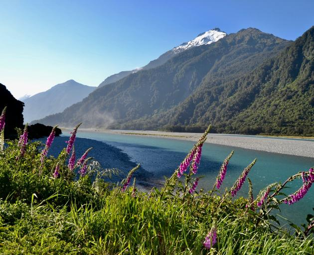 The road meanders along the Haast River. PHOTOS: JANE KING