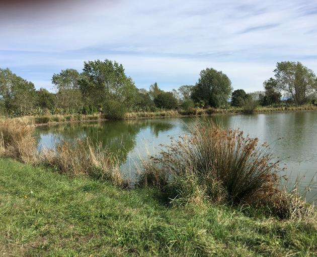 The farm water storage pond is used for kayaking and ski boating and is a place to practise fishing.