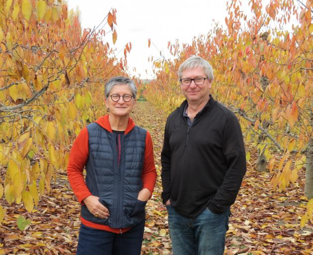 Summerfruit New Zealand chief executive Marie Dawkins and board chairman Tim Jones, who is also general manager of 45 South, Cromwell, were talking to growers and other industry stakeholders in Alexandra last week to discuss the proposed nearly $17 millio