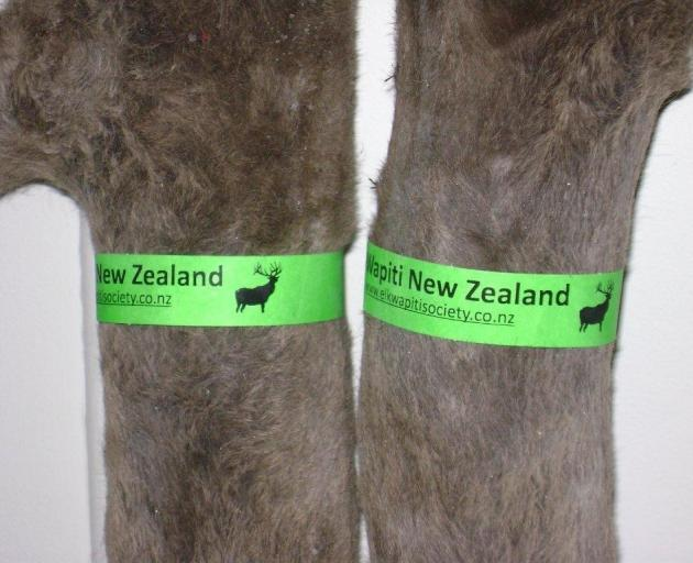 The deer industry is considering using a wristband-type tag on velvet so it can be traced back from the marketplace to the farm of origin. Photo: Tony Pullar, Elk and Wapiti Society of New Zealand