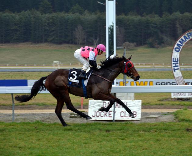 Come Fly With Me, in the hands of jockey Lisa Allpress, wins at the corresponding June meeting three years ago. The 8yr-old mare will be seeking her fourth win on the track from six starts there when she lines up in race 3 at Oamaru today. Photo: ODT fil