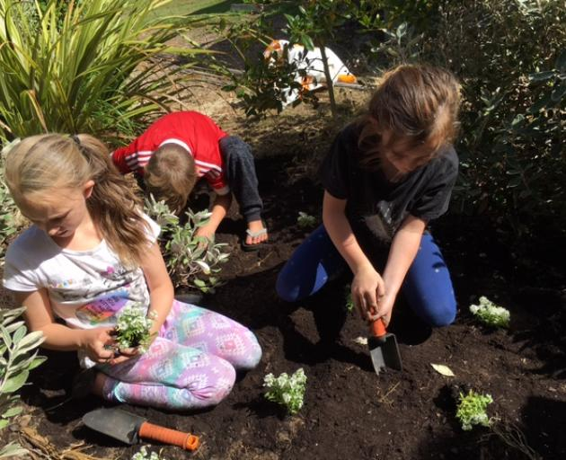 Above and left: Taieri Beach School pupils are building their own Bug City Development.