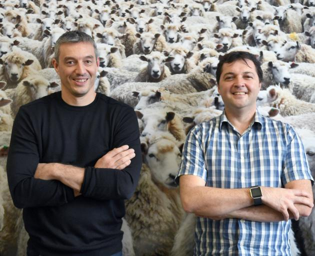 Benoit Auvray (left) and Greg Peyroux, of Iris Data Science, are working on sheep facial...