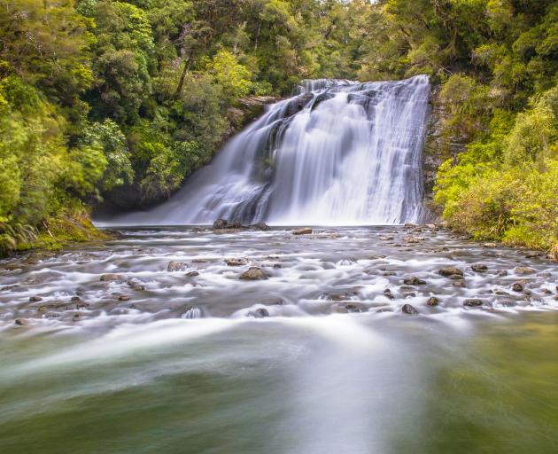 Te Urewera National Park. Photo: Getty Images